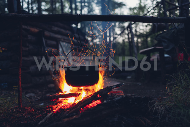 Container hanging over campfire in forest - FSIF01503