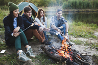 Friends roasting marshmallows in forest - FSIF01524