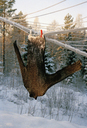 Wool sweater covered in snow whilst hanging on a clothes line - FSIF02373
