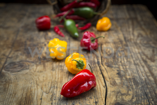 Various chili pods on wood - LVF06729
