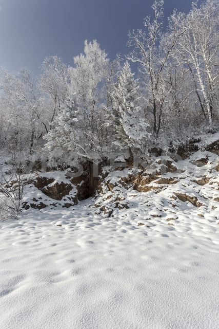Russia, Amur Oblast, snow-covered nature - VPIF00306