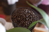 Roasted coffee beans - AFVF00132