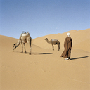 A man standing with two camels in a desert - FSIF02637