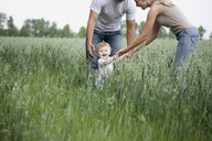 Two parents playing with their daughter in a field - FSIF02703