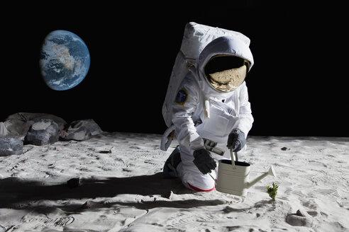 An astronaut gardening on the moon - FSIF02772
