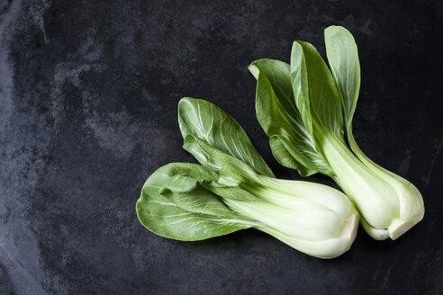 Chinese cabbage on dark metal - CSF28980