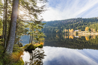 Germany, Bavaria, Lower Bavaria, Bavarian Forest, Kleiner Arbersee - FOF09825