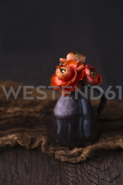 Persian buttercup in mini vase - MYF02012