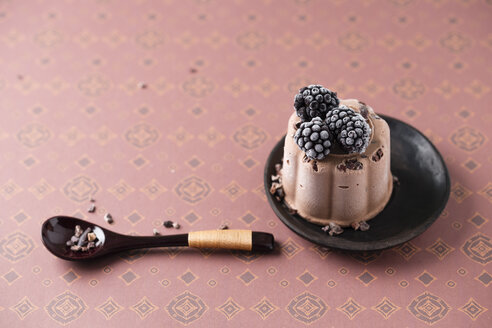 Chocolate ice cream cake with blackberry - MYF02017