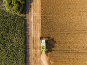 Serbia, Vojvodina. Combine harvester on a field of wheat, aerial view - NOF00006