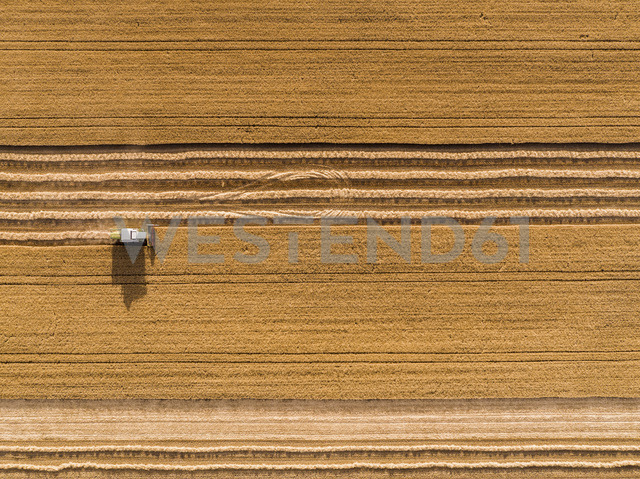 Serbia, Vojvodina. Combine harvester on a field of wheat, aerial view - NOF00012