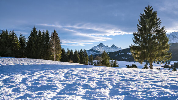 Germany, Bavaria, Upper Bavaria, Garmisch-Partenkirchen, Werdenfelser Land, hump-meadow in winter - STSF01463