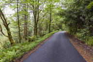 United Kingdom, Scotland, Scottish Highlands, empty road - WDF04466