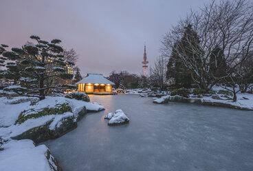 Germany, Hamburg, Japanese garden at Planten un Blomen park and Heinrich-Hertz Tower in winter - KEB00746