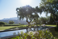 View of trees and mountains behind luxury lap pool - CAIF00325