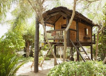 Tree house - CAIF00373