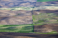 Aerial view of fields - CAIF00409