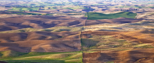Aerial view of rolling landscape - CAIF00412