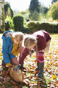 Girls petting dog in autumn leaves - CAIF00941
