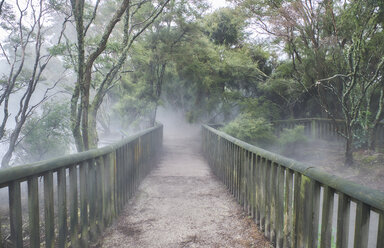 New Zealand, North Island, Rotorua, path through geothermal area - MRF01806