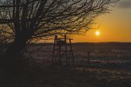 Germany, Mecklenburg-Western Pomerania, Darss, raised hide at sunrise - ASCF00837
