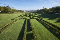 Portugal, Lisbon, Eduardo VII Park - MRF01833