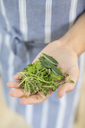 Woman holding handful of herbs - CAIF01933