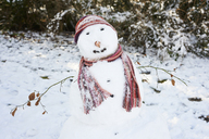 Snowman wearing scarf and hat - CAIF02450