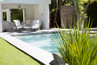 Plant and swimming pool in backyard - CAIF02623