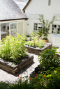 Planters in modern backyard - CAIF02626