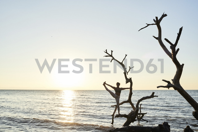 Young woman practicing yoga on a fallen tree in the sea at sunset - IGGF00445