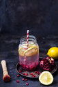 Fruit infused water with lemon slices, crushed pomegranate seeds and sparkling water - SBDF03475