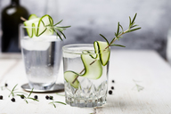 Gin Tonic with rosemary and cucumber - SBDF03478