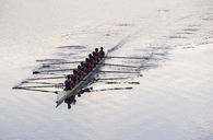 Rowing team rowing scull on lake - CAIF03247