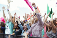 Fans cheering at music festival - CAIF03938