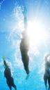 Triathletes in wetsuits underwater - CAIF04068