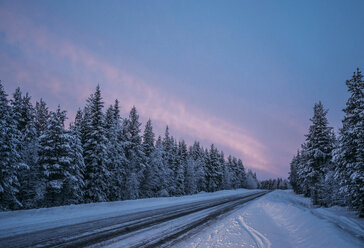 Remote winter road through snow covered forest trees, Lapland, Finland - CAIF04149