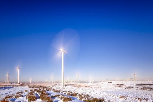Great Britain, Scotland, East Lothian, Lammermuir HIlls, Wind Farm in winter - SMAF00959