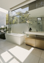 Sunny modern luxury home showcase bathroom - HOXF00175
