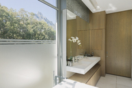 Modern luxury home showcase bathroom - HOXF00178