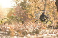 Boy and girl riding bikes in autumn leaves - HOXF00556