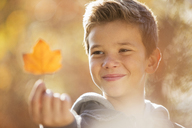 Close up boy holding golden autumn leaf - HOXF00565