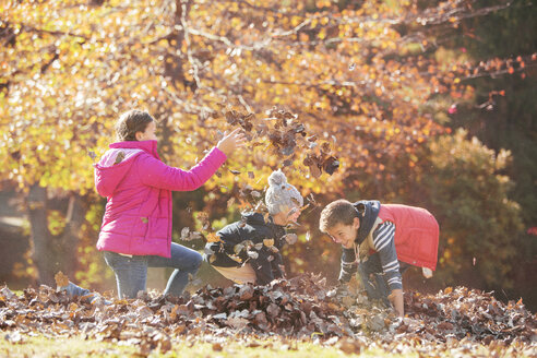 Boys and girl playing in autumn leaves - HOXF00568