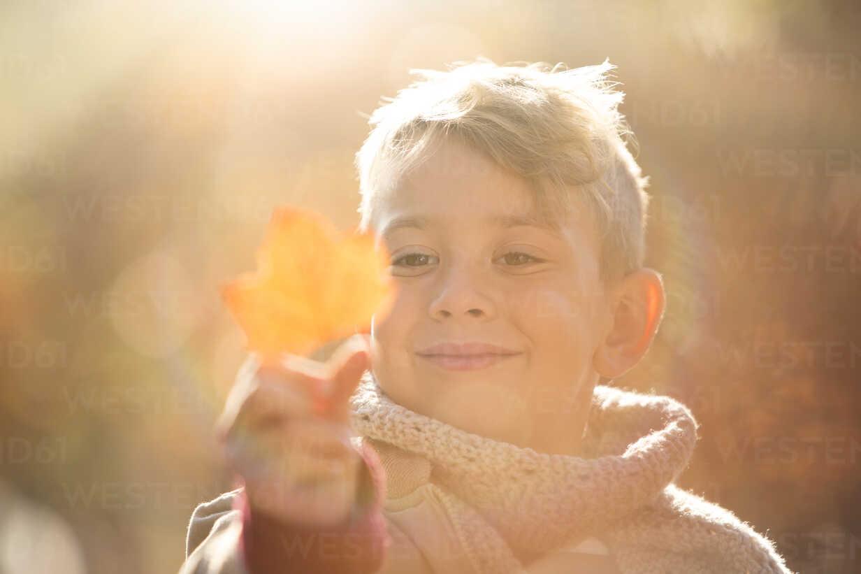 Close up smiling boy holding golden autumn leaf - HOXF00586 - Tom  Merton/Westend61