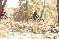 Boy and girl bike riding in woods with autumn leaves - HOXF00604