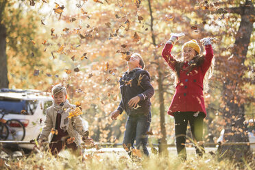 Boys and girl throwing autumn leaves overhead - HOXF00607