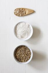 Rye flakes, rye flour and rye grains on white background - EVGF03285