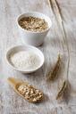 Rye ears, rye flakes, rye flour and rye grains - EVGF03288