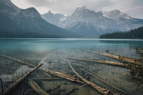 Canada, British Columbia, Columbia-Shuswap A, Emerald Lake Trail, Michael Peak,  Yoho National Park, Rocky Mountain - GUSF00332