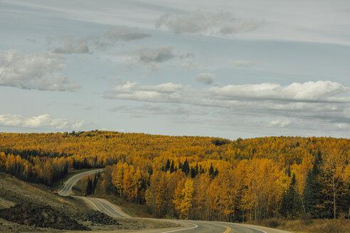 Canada, British Columbia, Northern Rockies, Alaska Highway in autumn - GUSF00359
